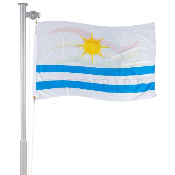 Bandeira de Palmas