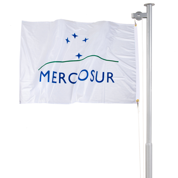 Bandeira do Mercosul Verso