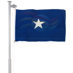 Bandeira da Alfândega
