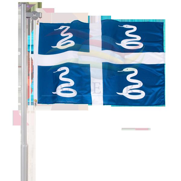 Bandeira da Martinica