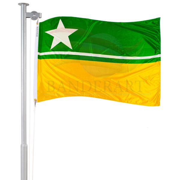 Bandeira de Boa Vista