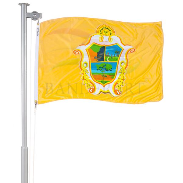 Bandeira de Manaus